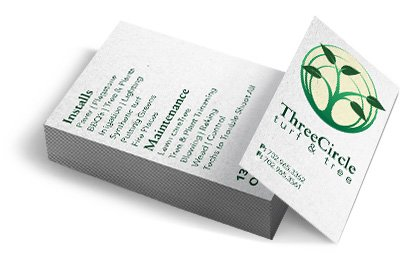 Professional set of business cards